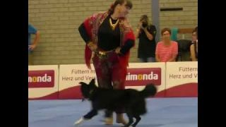 Viral TRND   Border collie and owner wow audience with captivating